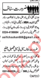 Accountant & Marketing Manager Jobs 2020 in Lahore