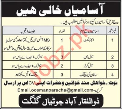 Accountant & Salesman Jobs 2020 in Gilgit