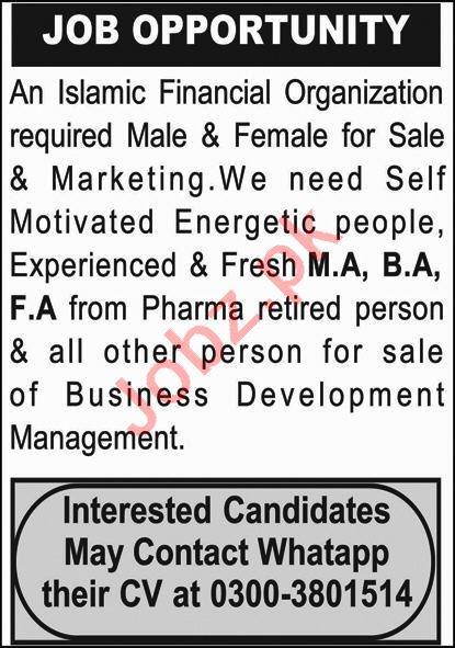 Islamic Financial Organization Quetta Jobs 2020