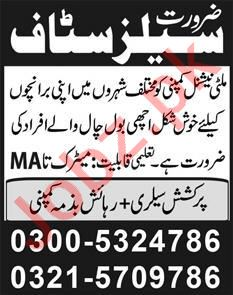Latest Marketing Company Sales Posts Lahore