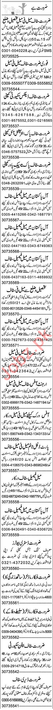 Recovery Officer & Pharmacist Jobs 2020 in Lahore