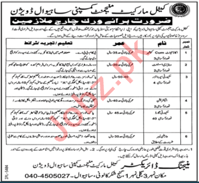 Cattle Market Management Company Sahiwal Division Jobs 2020