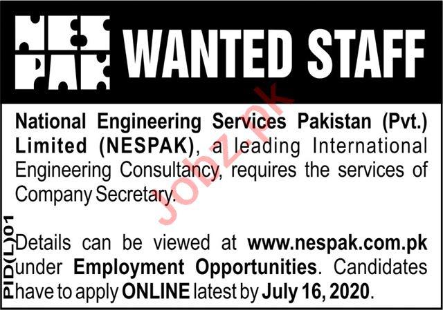 NESPAK National Engineering Services Lahore Jobs 2020