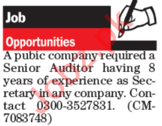 Accountant & Senior Auditor Jobs 2020 in Lahore