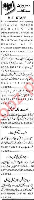 Nawaiwaqt Sunday Classified Ads 5th July 2020 Office Staff