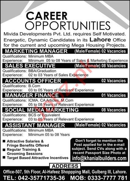 Mivida Developments Lahore Jobs 2020 for Marketing Manager