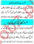 Lady Health Visitor & Gunman Jobs 2020 in Peshawar