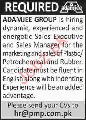 Sales Manager & Sales Executive Jobs 2020 in Karachi
