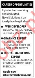 Nayel Solutions Jobs 2020 for Web Developer & Graphic Expert