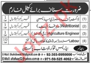 Doctor of Veterinary Medicine & Nutritionist Jobs 2020