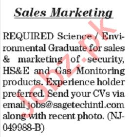 The News Sunday Classified Ads 12th July 2020 Sales Staff