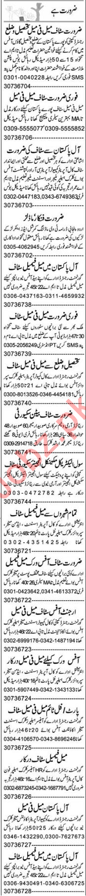 Insurance Agent & Receptionist Jobs 2020 in Lahore