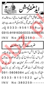 Office Assistant & Insurance Agent Jobs 2020 in Peshawar