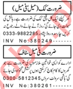 Domestic Staff Jobs Career Opportunity in Peshawar 2020