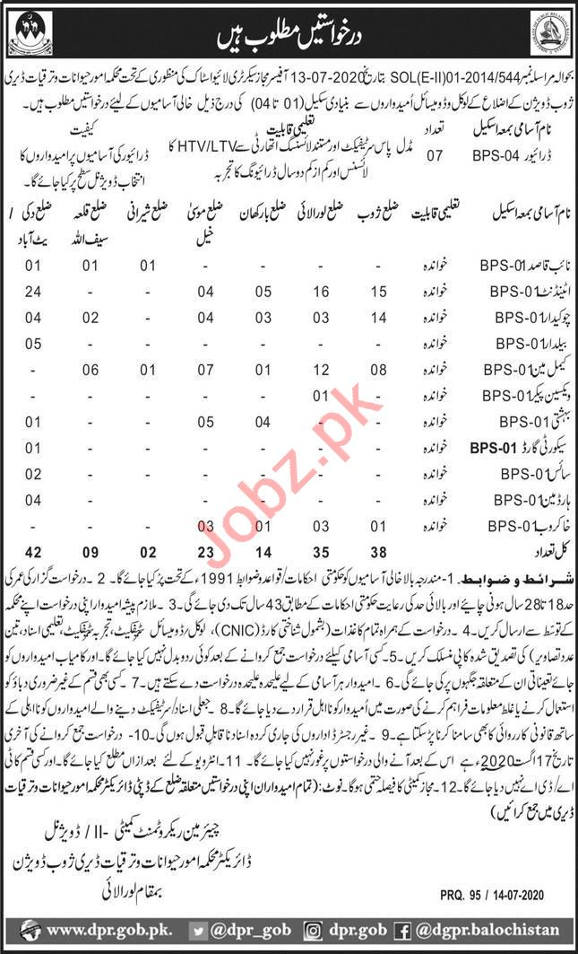 Animal Affairs Dairy Department Zhob Jobs 2020 for Drivers