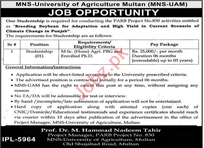 MNS University of Agriculture Multan Jobs 2020 Studentship