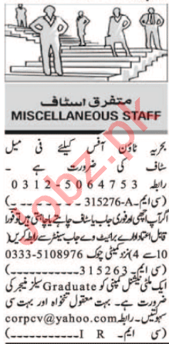 Personal Assistant & Sales Manager Jobs 2020 in Islamabad