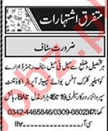 HR Officer & Branch Manager Jobs 2020 in Lahore
