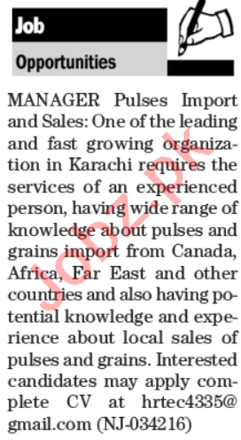 Sales Manager & Manager Pulses Import Jobs 2020