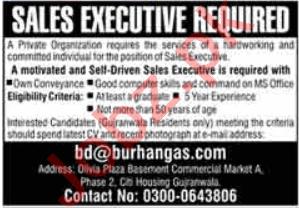 Burhan Gas Company Gujranwala Jobs 2020 Sales Executives