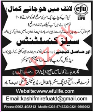 Efu Life Assurance Abbottabad Jobs 2020 for Sales Consultant