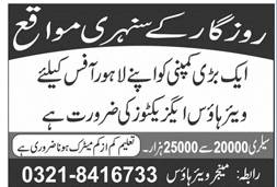 Warehouse Executives Jobs 2020 in Lahore