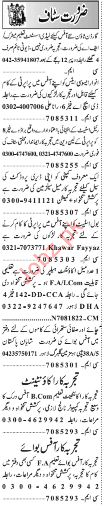 Lady Assistant & Accountant Jobs 2020 in Lahore