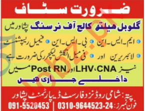 Global Health College of Nursing Peshawar Jobs 2020