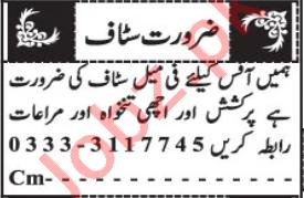 Lady Secretary & PA Jobs 2020 in Quetta