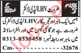 Lady Doctor & Gynecologist Jobs Open in Quetta