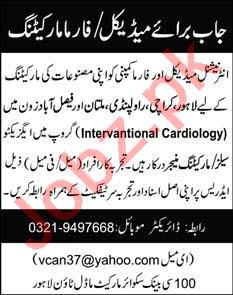 Executive Sales & Marketing Manager Jobs 2020 in Lahore
