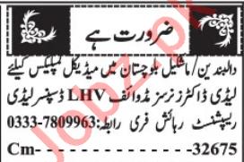 Midwife & Dispenser Jobs 2020 in Quetta