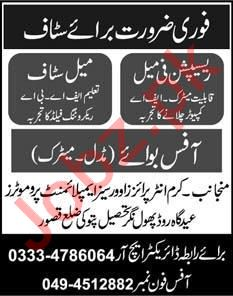 Female Receptionist & Office Boy Jobs 2020 in Kasur