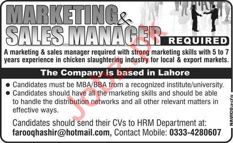 Marketing Manager Jobs in Chicken Slaughtering Industry