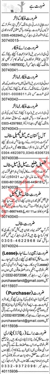 Business Development Executive & Architect Jobs 2020