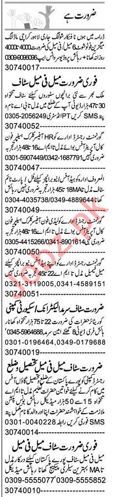Coordinator & Accountant Jobs 2020 in Peshawar