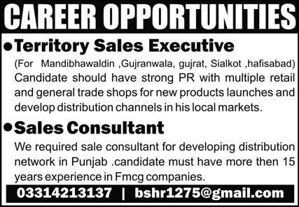 Sales Consultant & Sales Executive Jobs 2020