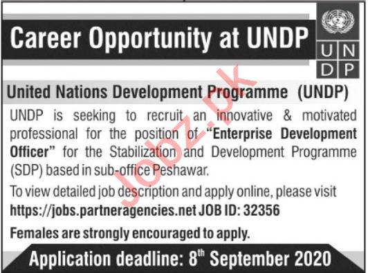Enterprise Development Officer Jobs 2020 in UNDP KPK