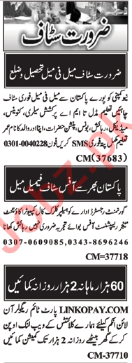 Data Entry Operator & Cashier Jobs 2020 in Islamabad