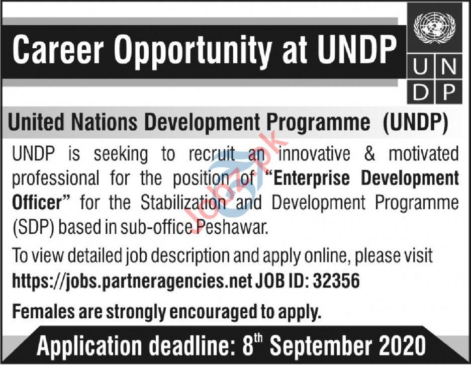 United Nations Development Programme UNDP KPK Jobs 2020