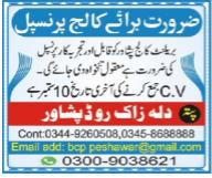 Principal Job 2020 For College in Peshawar KPK