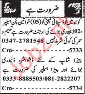 Delivery Boy & Kitchen Helper Jobs 2020 in Quetta