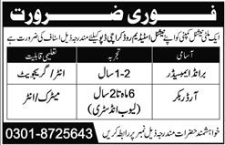 Brand Ambassador & Order Booker Jobs 2020 in Karachi