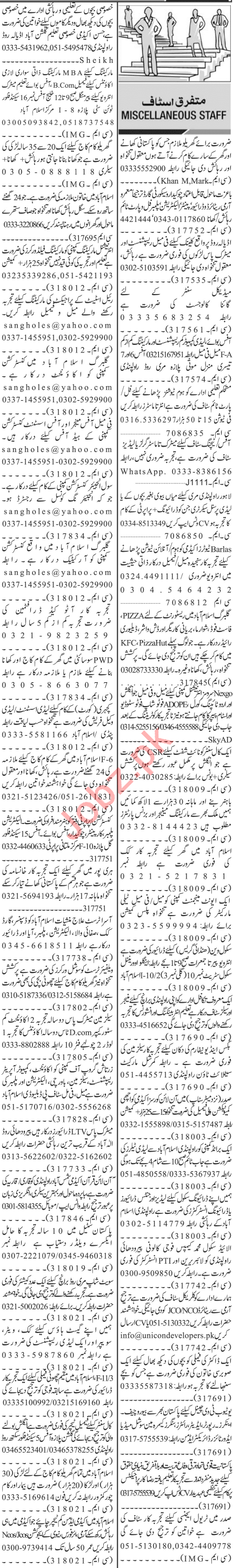 Jang Sunday Classified Ads 13 Sep 2020 for Management