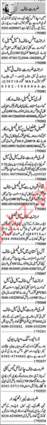 Assistant Manager & Accounts Manager Jobs 2020 in Lahore