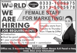 Female Marketing Staff Jobs in Business World Islamabad