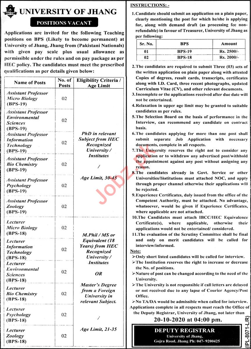 University of Jhang Jobs 2020 for Assistant Professor