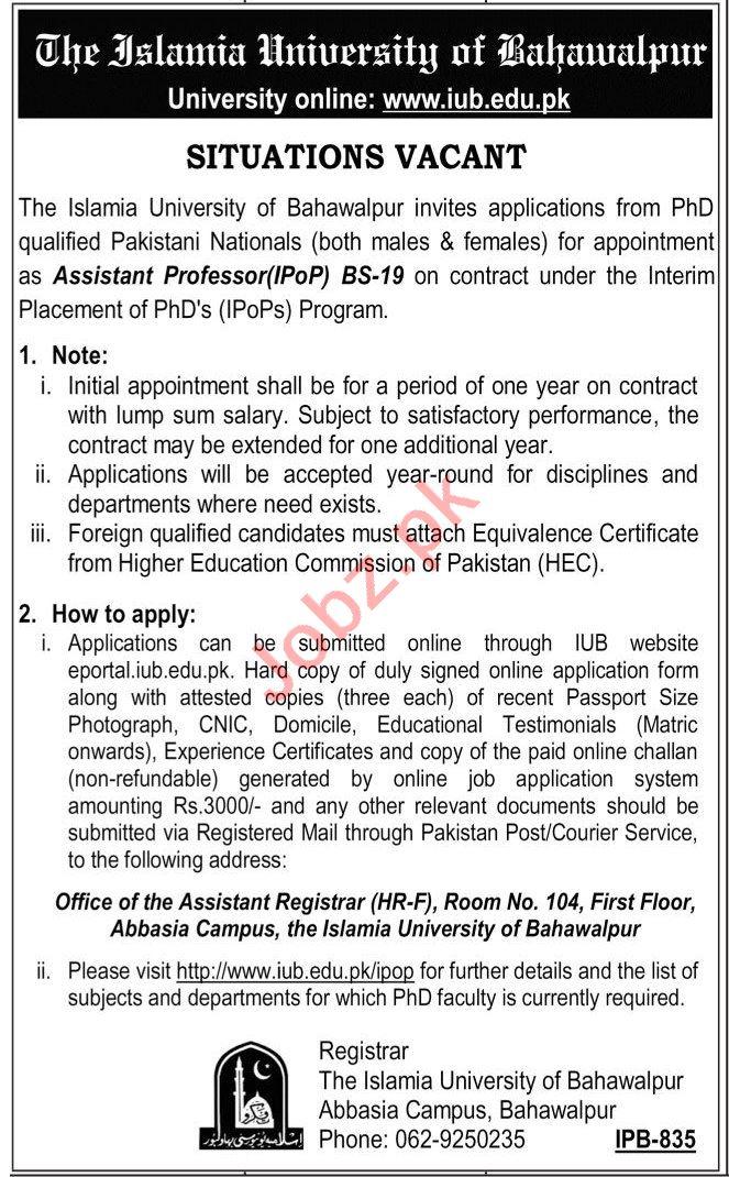 The Islamia University of Bahawalpur IUB Jobs for Professor