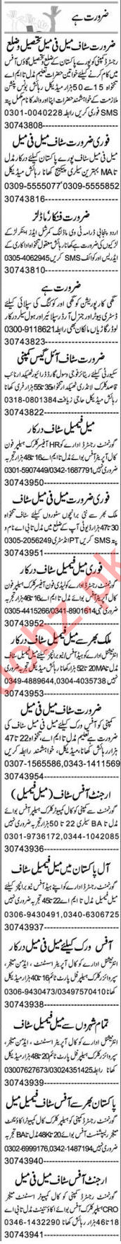 Administrator & Recovery Officer Jobs 2020 in Multan