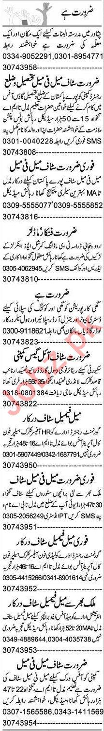 Admin Officer & Assistant Manager Jobs 2020 in Peshawar